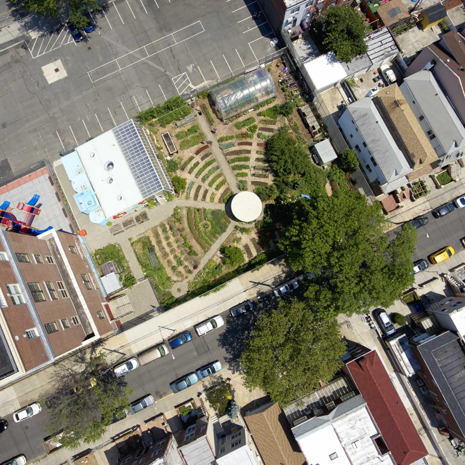 Edible Schoolyard NYC at P.S. 216